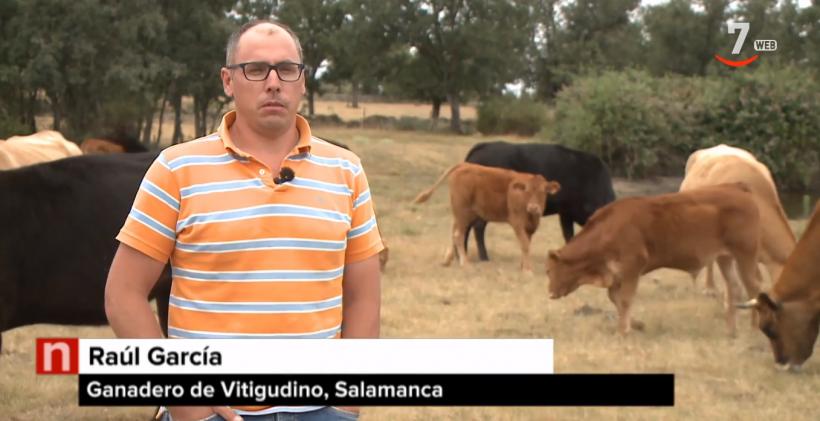 Los ganaderos se unen a los proyectos del ITACYL y las universidades de León, Salamanca y Extremadura para defenderse de quienes les acusan de contaminar